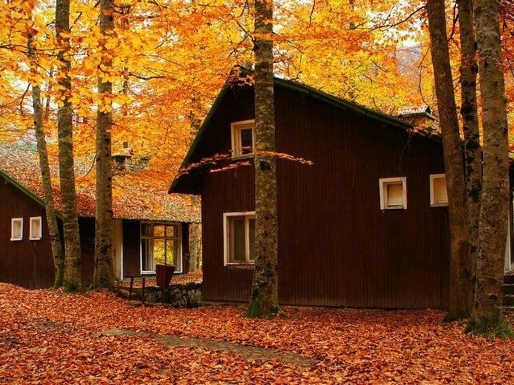 Nazlı Evler